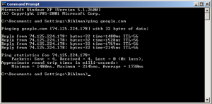 pinging google in windows xp